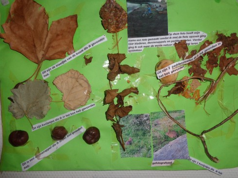 De bos vondsten worden bekeken en besproken en dan opgehangen in de klas.